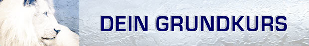 FreeSpirit® Kurse Grundkurs Logo schmal